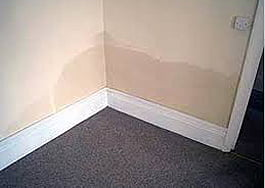 rising damp scottish borders